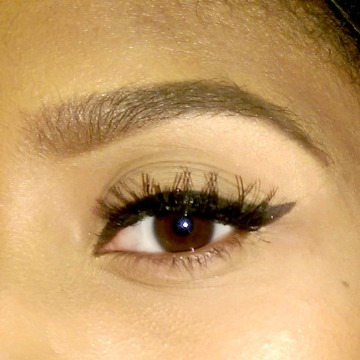 Winged Liner 8